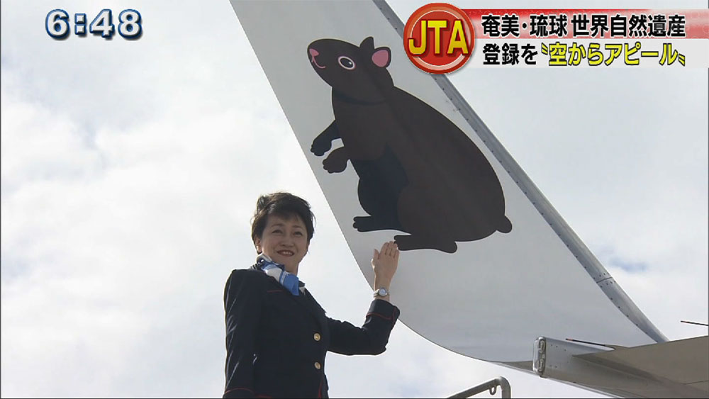 世界自然遺産登録を応援 JTA特別塗装機