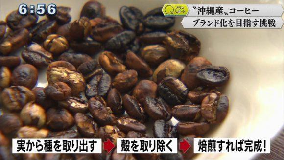 Qプラスリポート 沖縄のコーヒーブランド化へ
