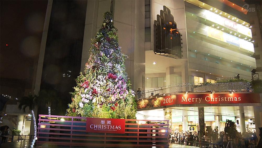 南国沖縄で「楽園クリスマス」を