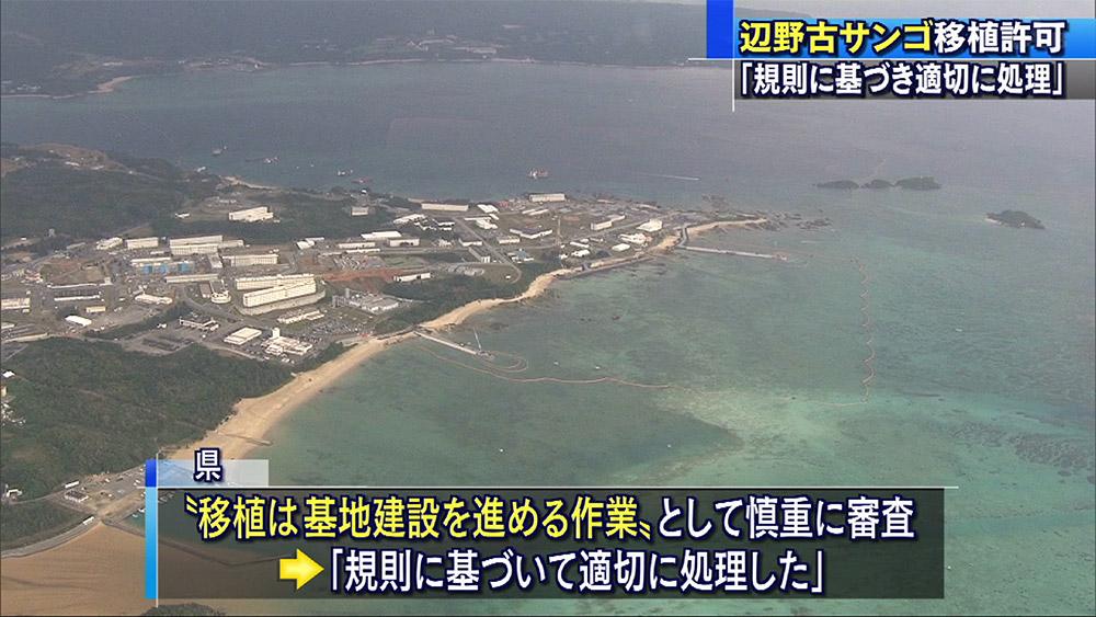 新基地建設海域のサンゴに初の移植許可