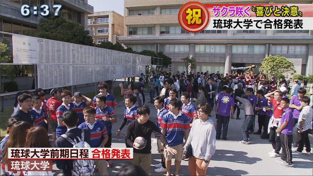 サクラ咲く、琉球大学で前期日程合格発表