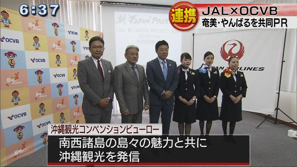 広域連携で琉球弧PR JALとOCVB