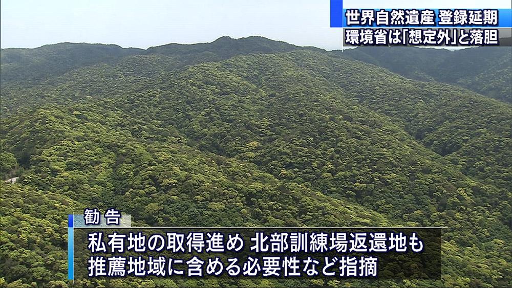 奄美・沖縄 世界自然遺産登録を延期