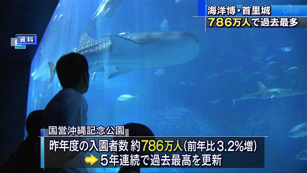 海洋博・首里城 786万人で過去最多