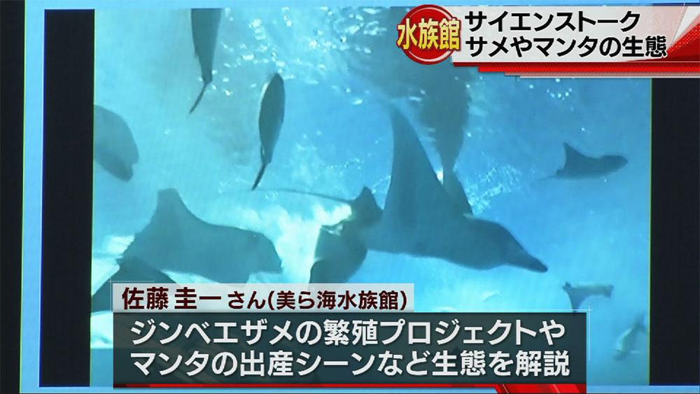 美ら島水族館でサメ博士がサイエンストーク