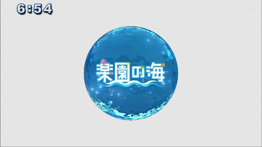 楽園の海 GWダイビング!