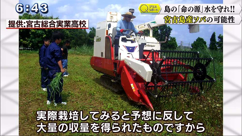 Qプラスリポート 宮古島 島の未来を担う農作物