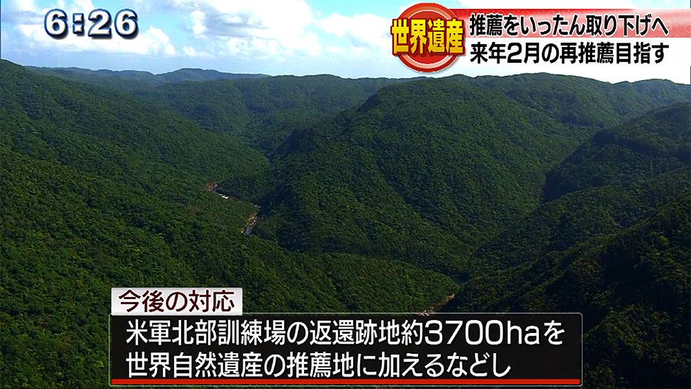 沖縄・奄美の世界自然遺産推薦取り下げ方針固める