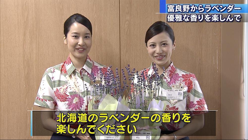 JALグループ ラベンダー贈呈