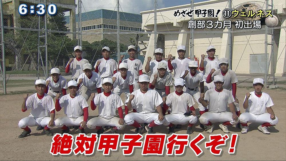 めざせ甲子園!(11) 日本ウェルネス