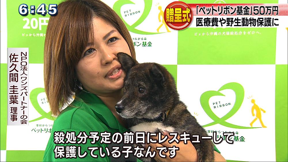 「ペットリボン基金」50万円贈呈式