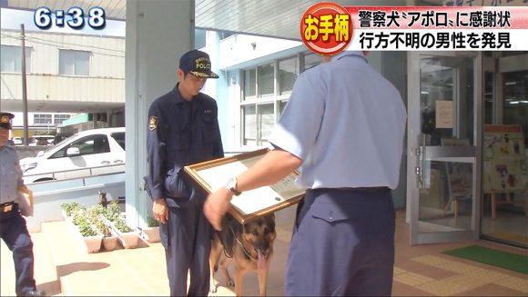 警察犬アポロへ感謝状 不明男性を発見