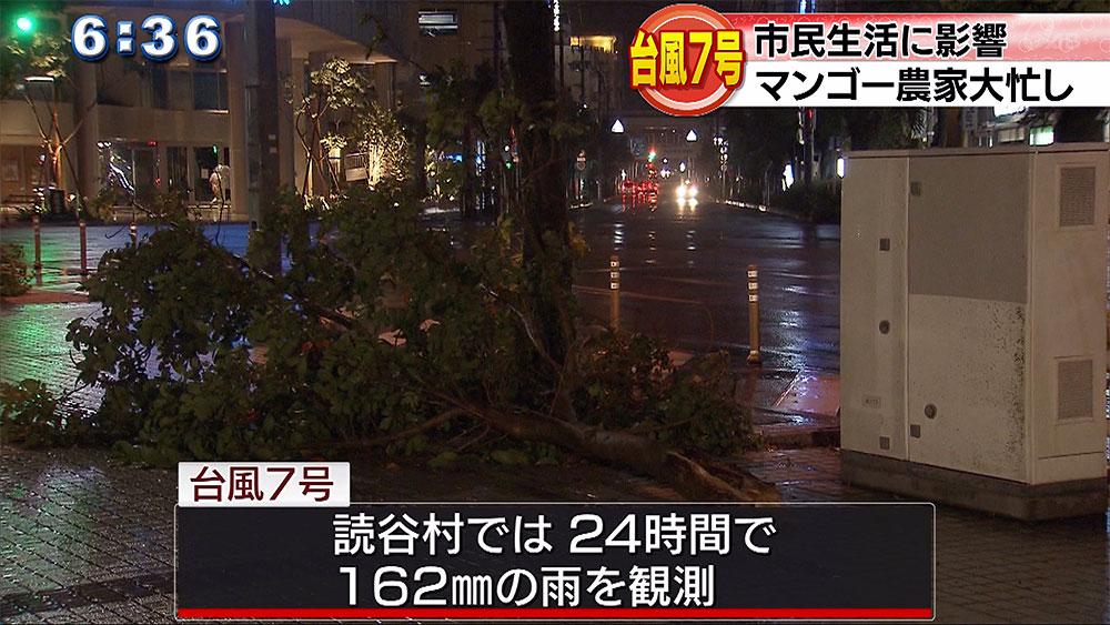 台風7号 思わぬ被害も