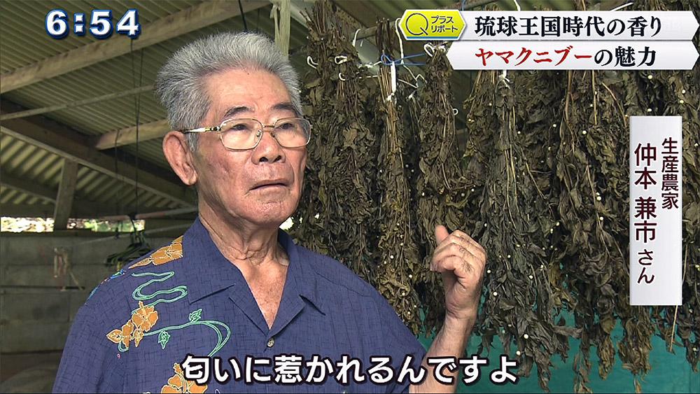 Qプラスリポート 琉球王国時代の香り ヤマクニブー