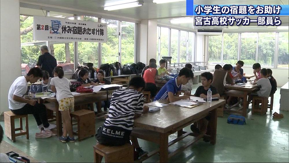 高校生が小学生の宿題をお助け!