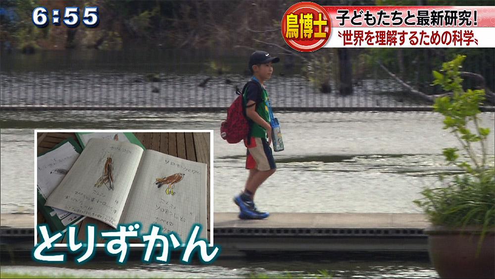 第2弾 OIST 鳥プロジェクト 鳥博士と子どもが共同研究!?