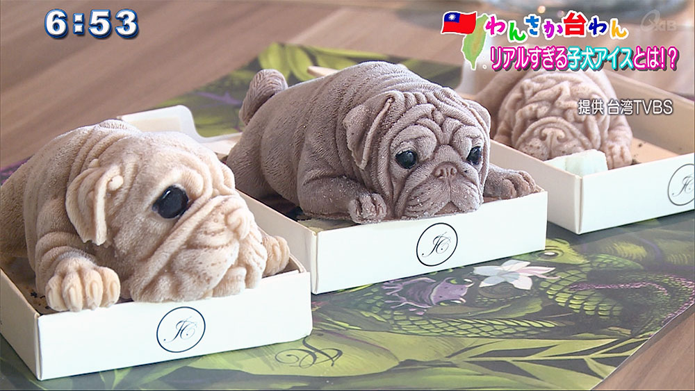 わんさか台湾 リアルすぎる子犬アイスとは!?