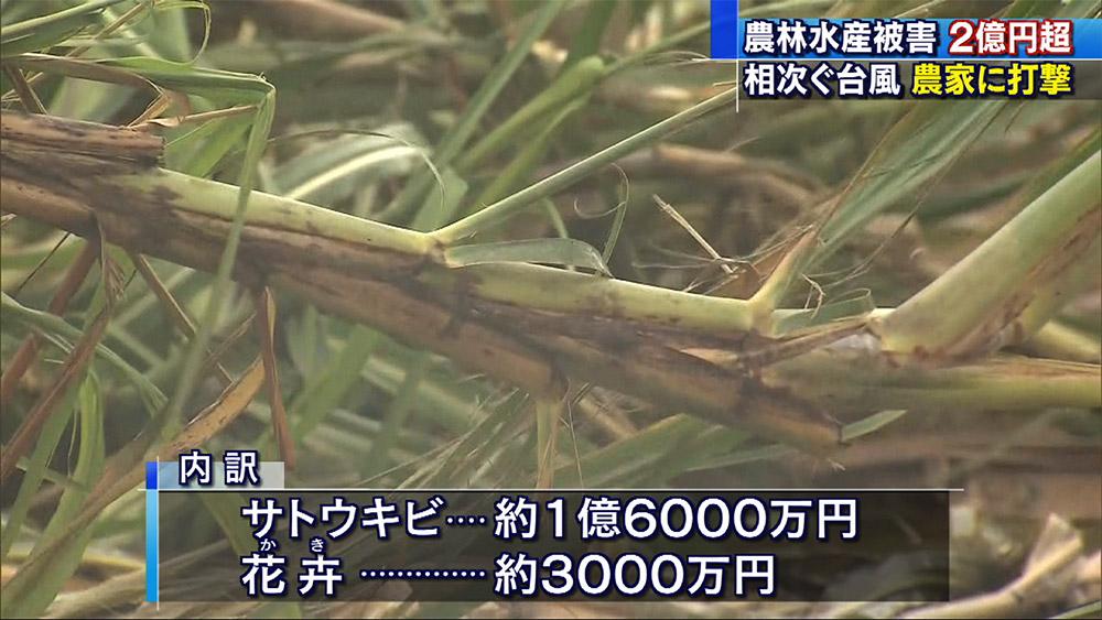 台風25号 農作物被害2億円以上