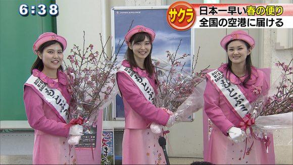 日本一早い桜を全国へ! JALグループ発送式