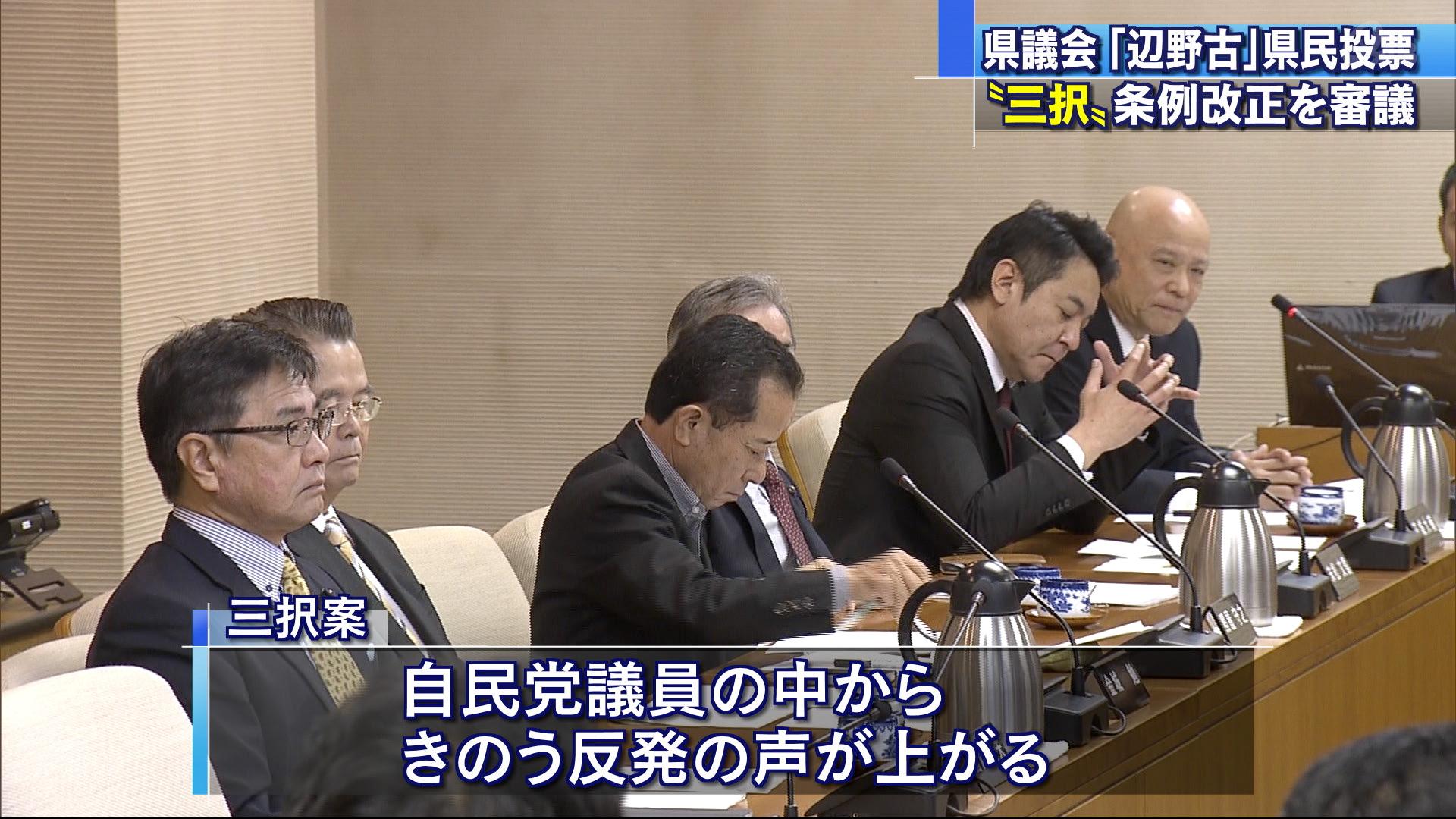 県民投票・改正案、県議会で審議開始