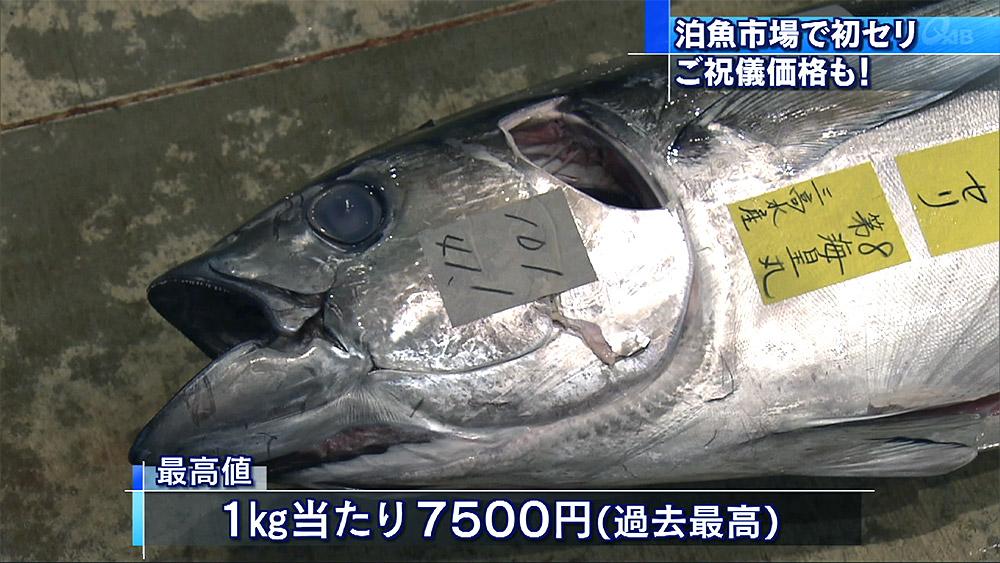 泊魚市場で初セリ お祝儀価格も
