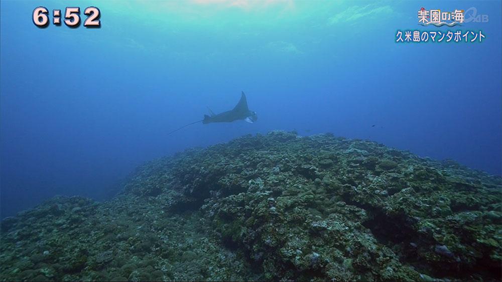 楽園の海 地形を堪能するポイントなのに…