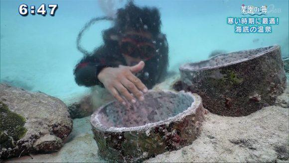 楽園の海 寒い時期に最適!海底の○○