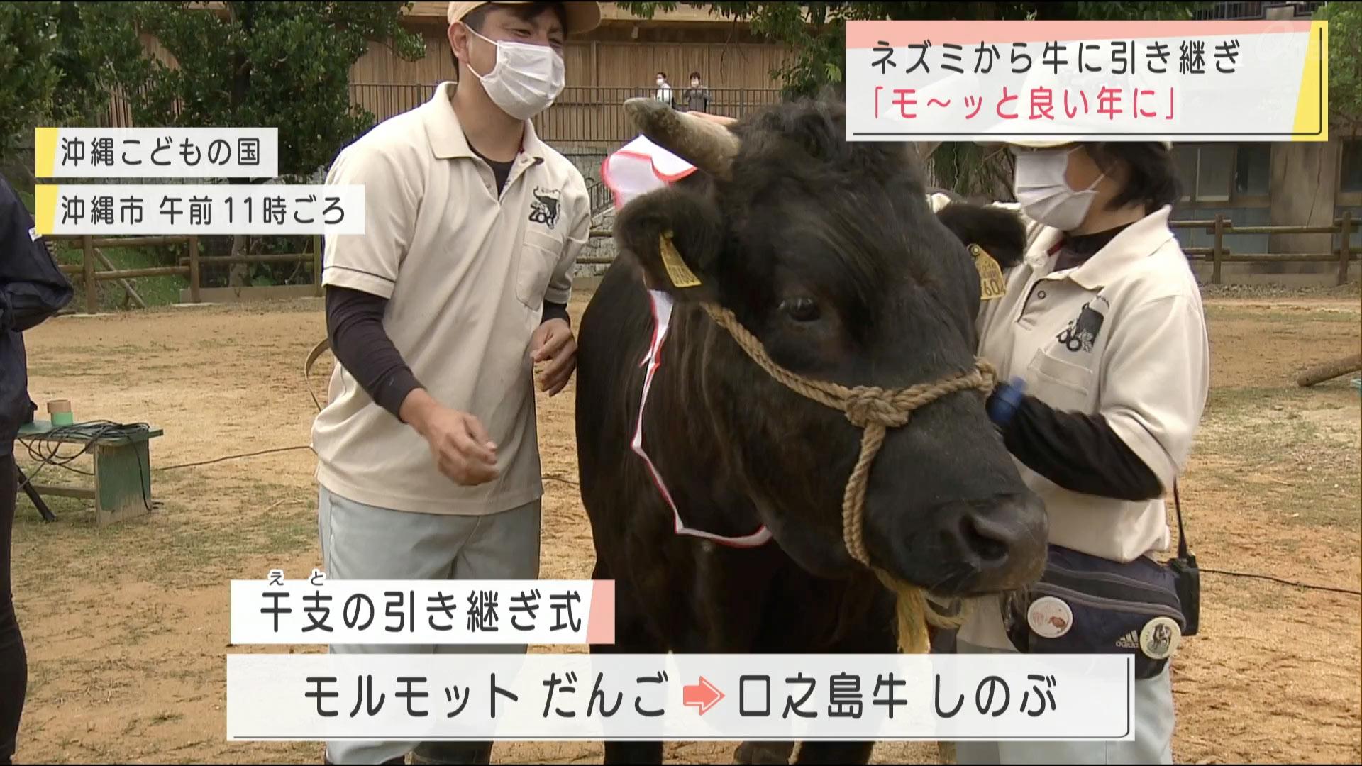 ねずみから牛へ 干支の引き継ぎ式