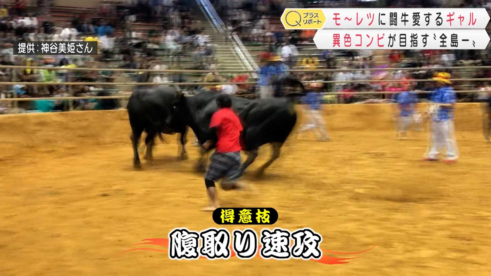 闘牛会の異色コンビ
