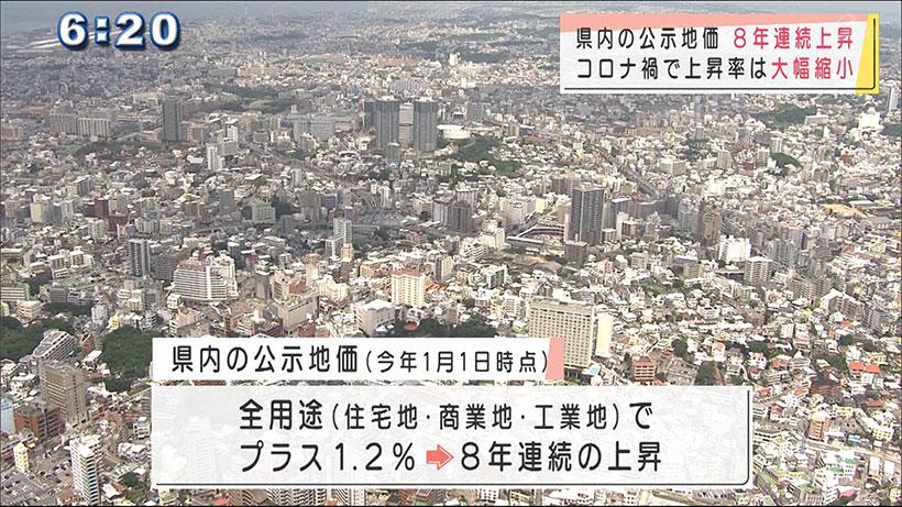 沖縄県内の公示地価 8年連続上昇も上昇率は縮小