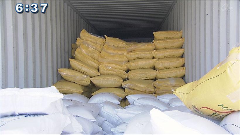 オキナワと沖縄をつなぐ絆 オキナワ移住地から大豆を初輸出