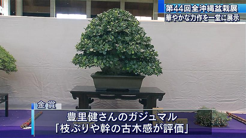 第44回全沖縄盆栽展
