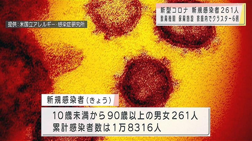 新型コロナウイルス新たに261人感染