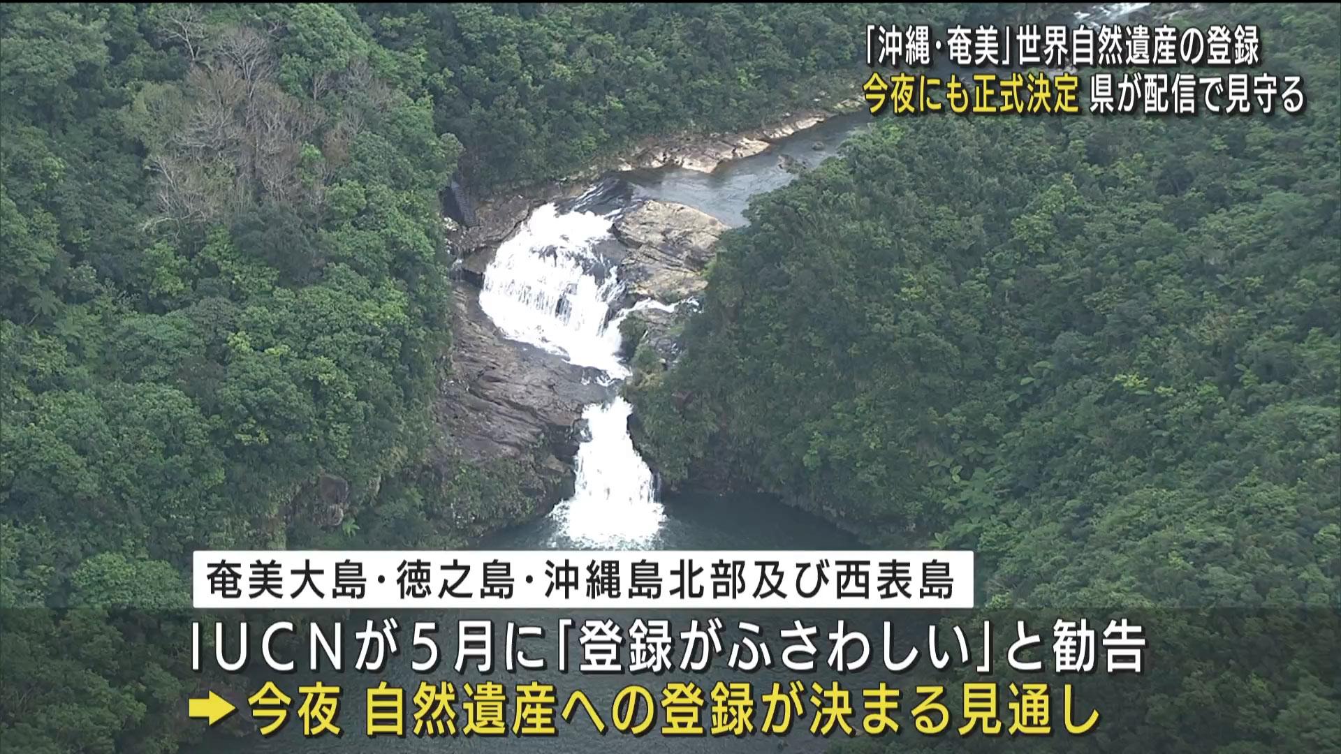 「沖縄・奄美」世界自然遺産登録 今夜正式決定へ