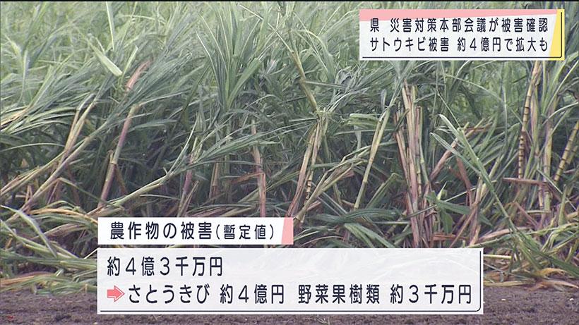 台風6号災害対策本部会議で被害状況確認
