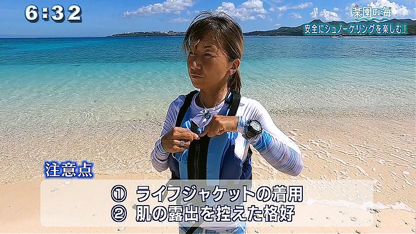 楽園の海 安全にシュノーケリングを楽しむ