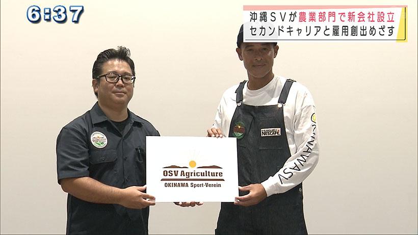 沖縄SVが農業会社を設立