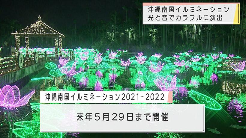 東南植物楽園イルミネーション始まる