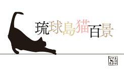 琉球島猫百景