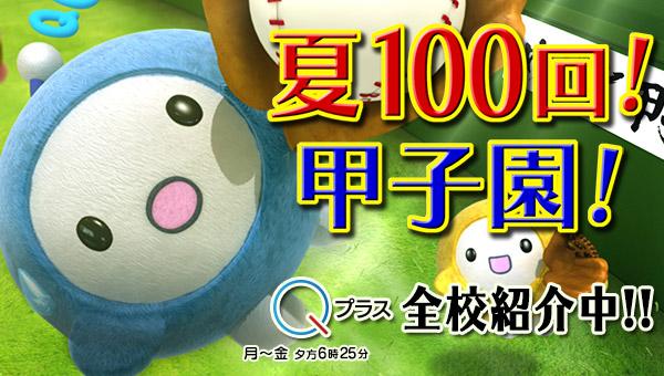 夏100回!甲子園! | めざせ甲子園!