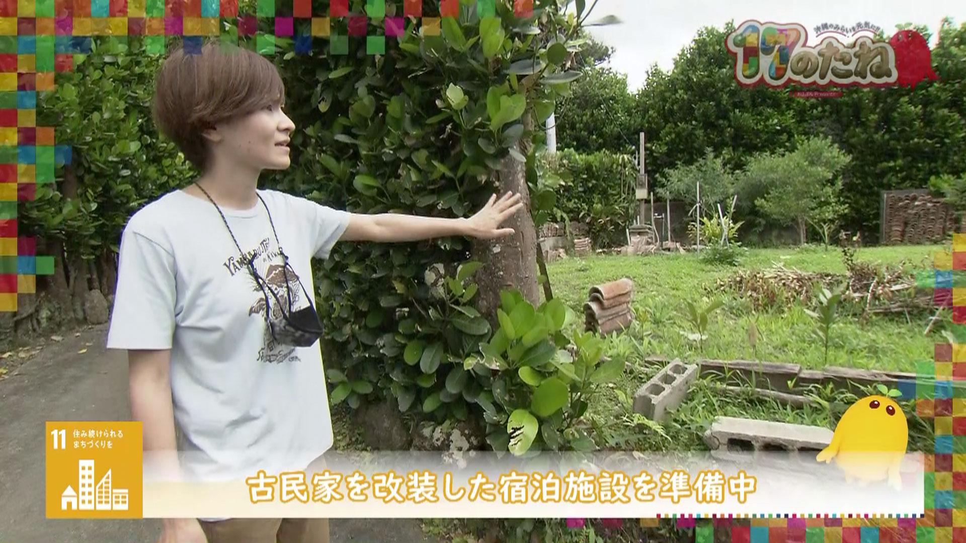 「Endemic Garden H」6月1日放送